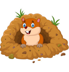 cartoon groundhog looking out of hole vector image