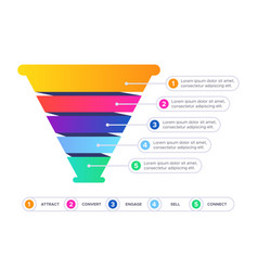 funnel sales infographic marketing conversion vector image