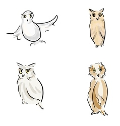 Owl sketches vector