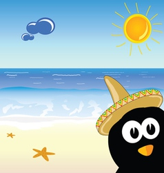 penguin on the paradise beach vector image