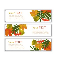 advertising banners with autumn leaves vector image