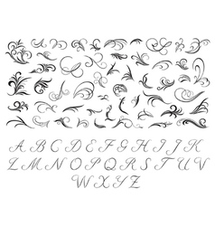 Floral pattern and initials vector image