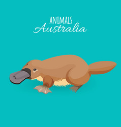 australia animal brown crawling duckbilled vector image vector image