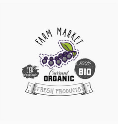 bio sticker and eco products black currant berry vector image