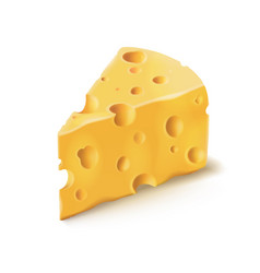 Cheese piece with holes 3d realistic dairy vector