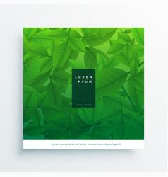 green leaves card design background vector image