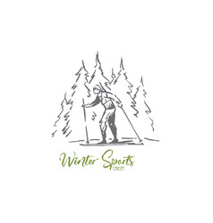 skiing winter forest sport extreme vector image