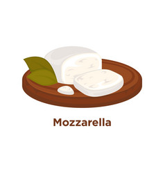 tender mozzarella with laurel leaves on wooden vector image