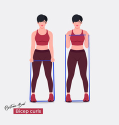 Banded bicep curls exercise vector
