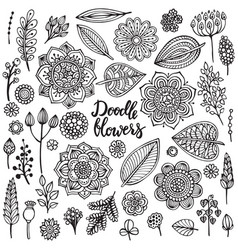 Big set hand drawn flowers branches vector