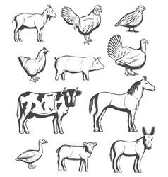 Cattle farm animals and birds vector