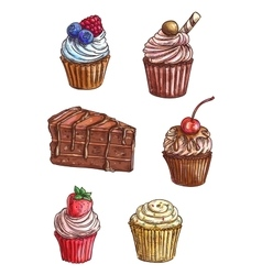 Chocolate cake cupcake sketches with cream fruit vector image