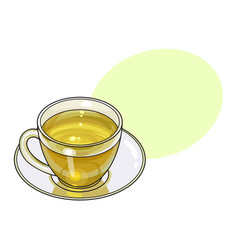 Hand drawn glass cup mug of green tea drink vector