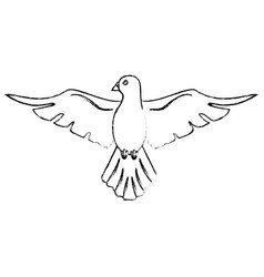 Holy spirit catholicism sacredness sketch vector