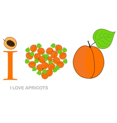 i love apricots vector image