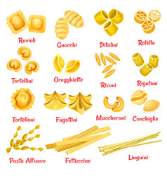 pasta type with name poster of italian macaroni vector image