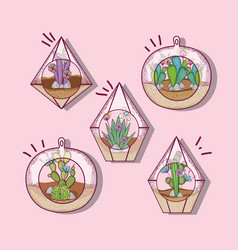 Plant inside polyhedron glass vector
