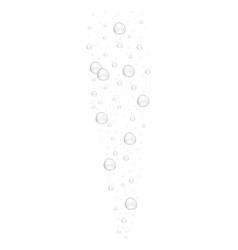 realistic underwater fizzing air bubbles isolated vector image