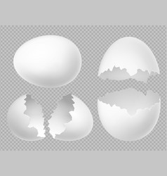 realistic white eggs set with whole and vector image