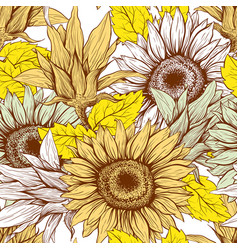 sunflowers field seamless pattern for vector image