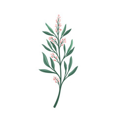 Thin branch with pink small flowers vector