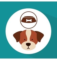 Veterinary dog care bowl of dog food icon vector