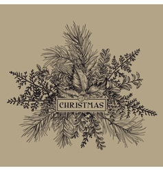 Christmas frame with pine branches holly mistletoe vector image vector image