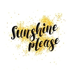 Sunshine Please Phrase over white background with vector image vector image