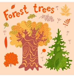 Forest trees bushes leaves vector image vector image