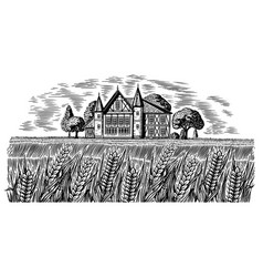 brewery on background wheat and barley vector image