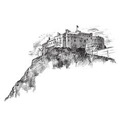 castle vintage vector image