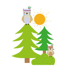 colorful ethnic owls animals with pine trees and vector image