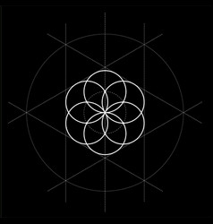 Flower of life with construction lines sacred vector