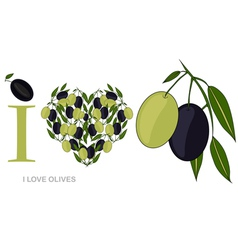 i love olives vector image