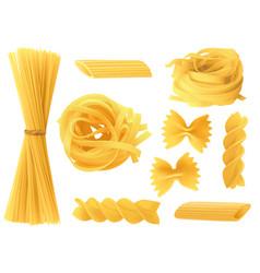 italian pasta types realistic 3d dry spaghetti vector image