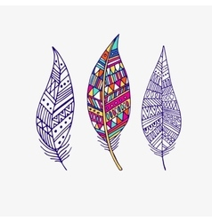pattern with the image of bird feathers Boho vector image