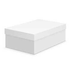 shoe box mock up isolated vector image