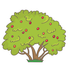 Shrub with berries vector