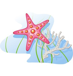 Underwater starfish coral algae vector