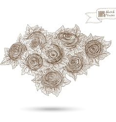 Sketch of roses vector image