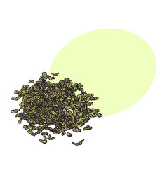 hand drawn pile heap of dry green tea leaves vector image vector image