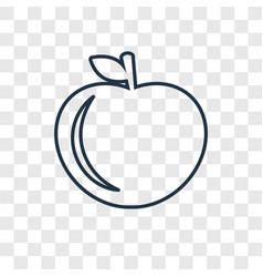 apple concept linear icon isolated on transparent vector image