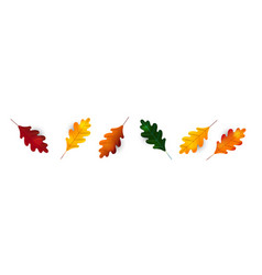 autumn leaf fall colorful leaves oak leaf vector image