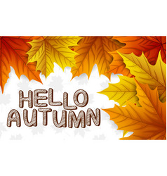 autumn leaves with lettering on white background vector image