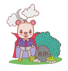 Bear with dracula costume wearing cape and teeth vector