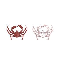 sea crabs set colorful vector image