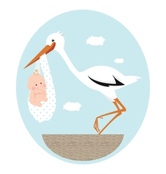 Stork and newborn bain nest vector
