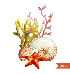 Watercolor sea coral shell vector