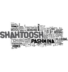 What is shahtoosh text word cloud concept vector
