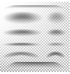 transparent soft shadow realistic oval vector image